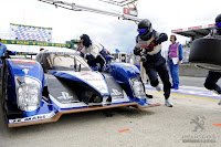 Peugeot+Picture+gallery PEUGEOT STAY ON TOP AT LE MANS