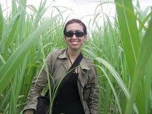 Professora Coordenadora da Rede de Weblogs.Com