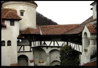 Poze castelul bran