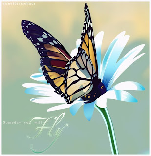 Fluturi frumosi