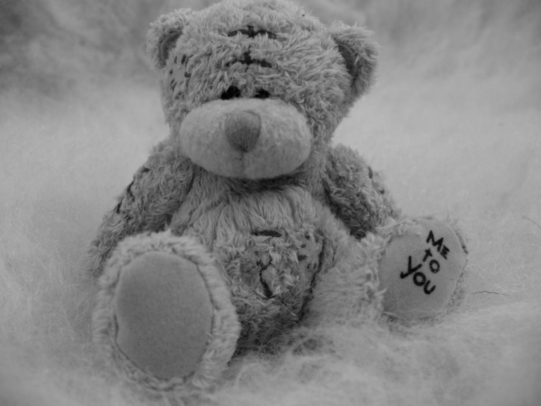 osito de peluche - juguetes - amor - blanco y negro - wallpaper