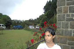 in front of adisam