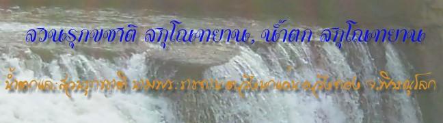 สวนรุกขชาติ สกุโณทยาน, น้ำตก สกุโณทยาน