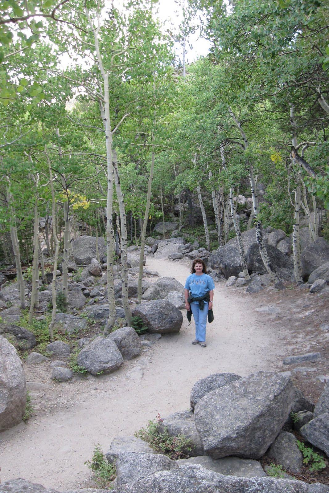Shady Creek Lane Idaho Springs And Rocky Mountain