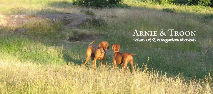 Arnie and Troon