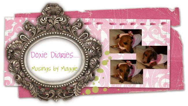 Doxie Diary