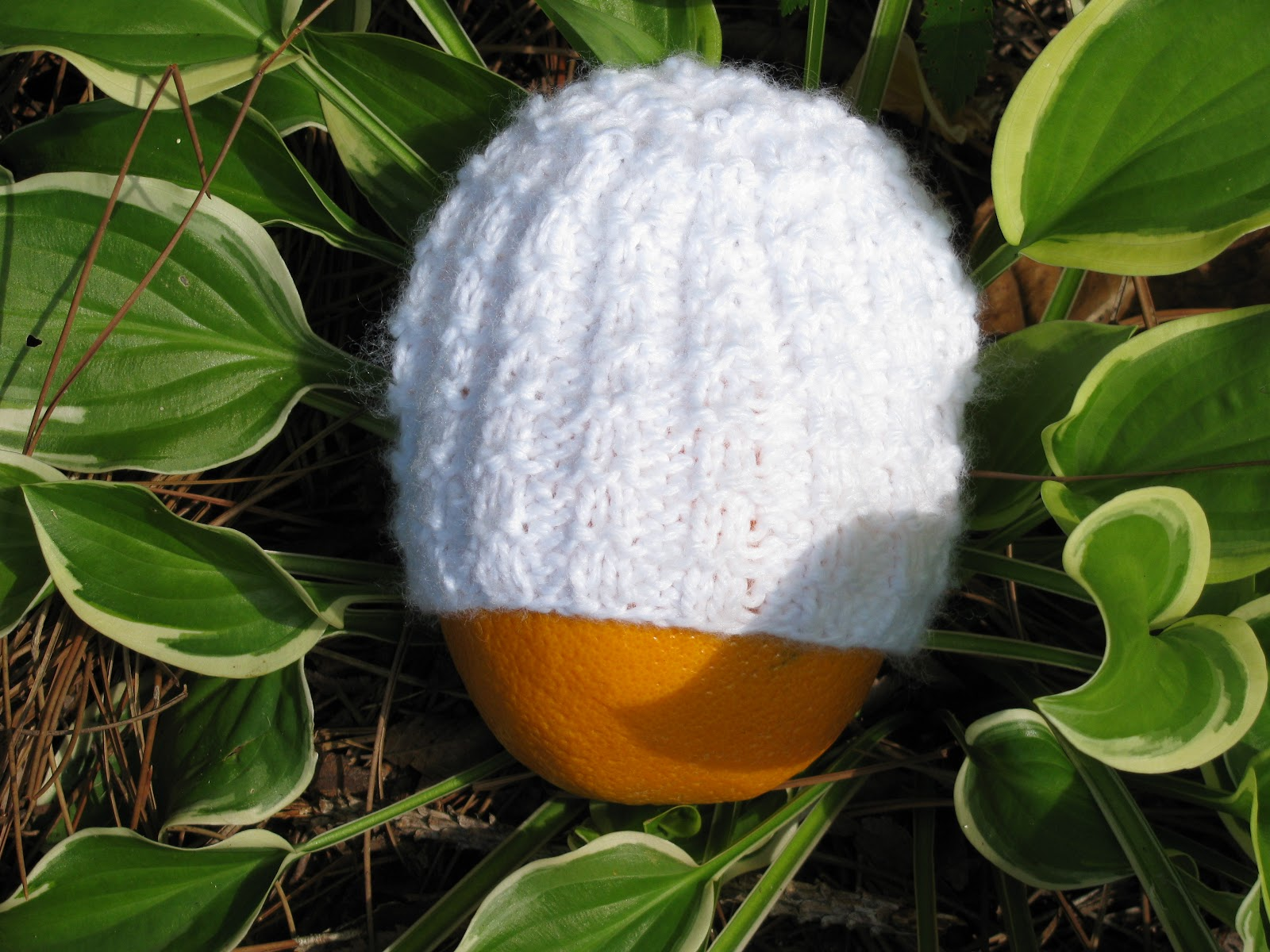Cedar Hill Farm Company: Waffle Stitch Preemie Hat Pattern