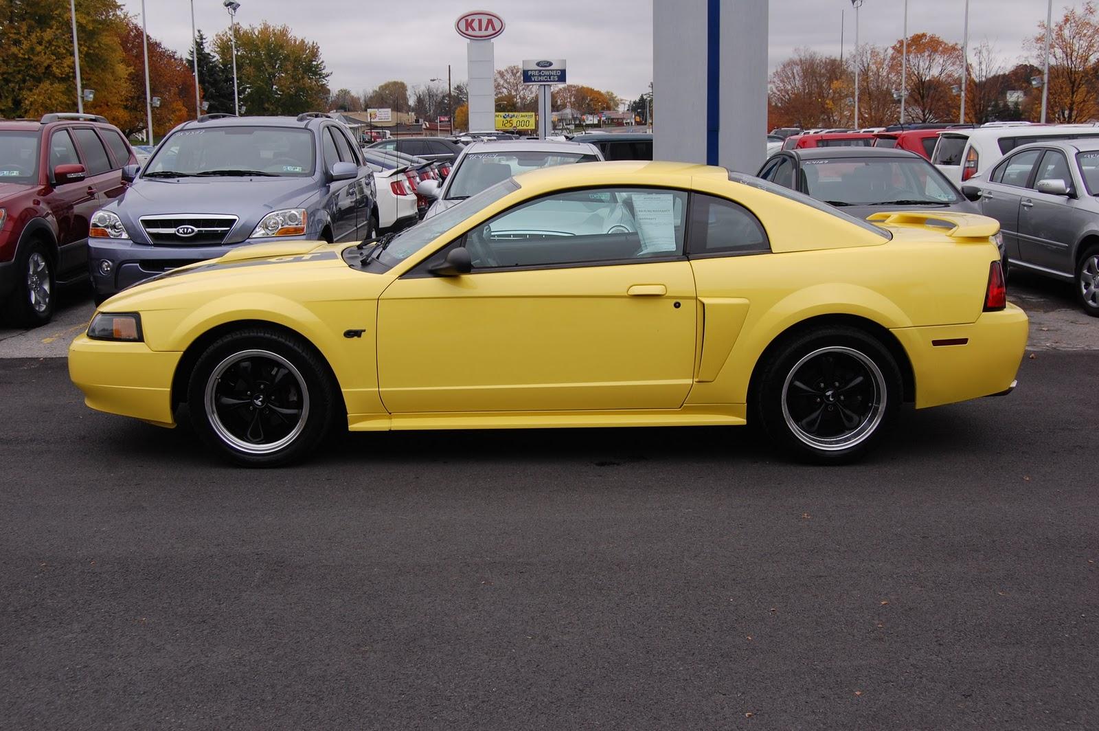 Bryan 39 S Mustang Dealer Photos