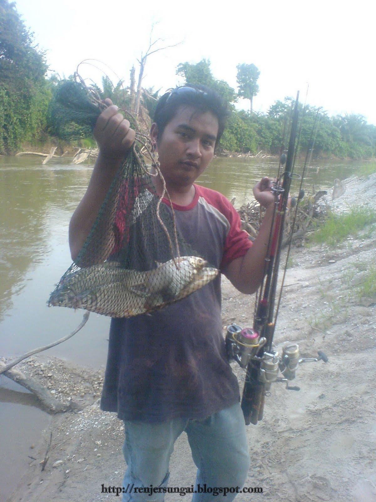 Ikan lam sg bernam skc