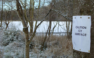 Sign pinned to tree near Hillborough lake - Caution Icy Surface