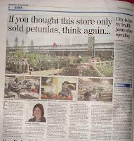 Lisburn garden centre traffic chaos - Belfast Telegraph