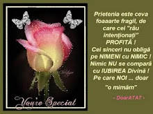 Premiul PRIETENIEI (de la Psalm de dor, doamna Mariana)