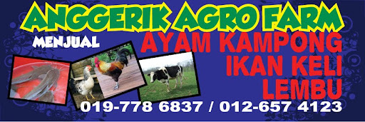 ANGGERIK AGRO FARM - BACKYARD CHICKEN FARM