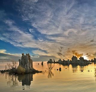Vida con arsenico en el lago Mono