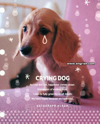 Dog crying sound