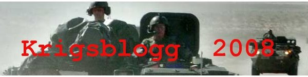 Krigsblogg 2008