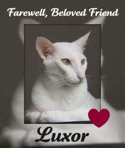 Luxor, rest in peace