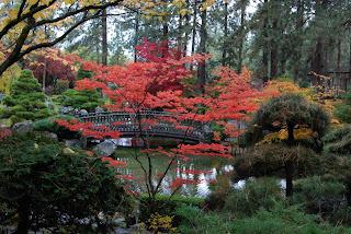 Brian backus blog october 31 2020 nishinomiya tsutakawa for Nishinomiya tsutakawa japanese garden koi