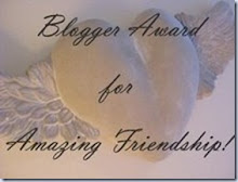 Amazing Frienship Award