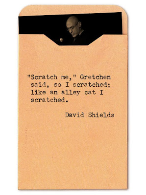 """Scratch me,"" Gretchen said, so I scratched; like an alley cat I scratched."
