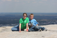 Breathtaking View From Stone Mtn.