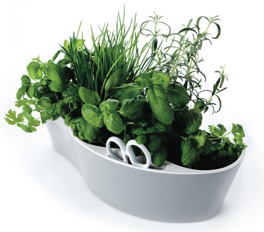 Wannabeahippy small spaces container herb gardens for Container herb garden