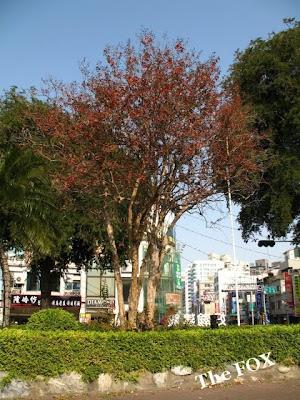 台南旅遊 湯德章紀念公園