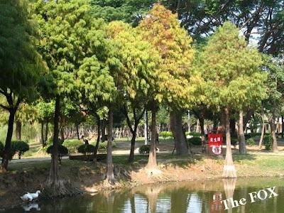 巴克禮紀念公園夢湖