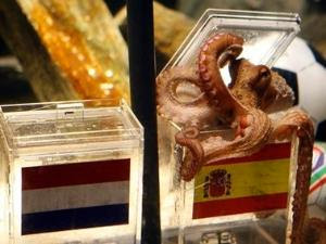 Paul The Octopus Dead