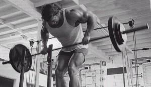 remada, peitoral, lombar, triceps, trapezio, quadril, costa