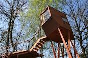 * casa de árvore