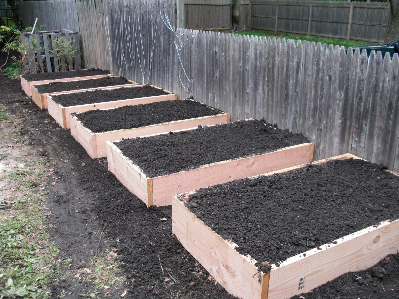 Tagan 39 s kitchen building raised garden beds for Making raised garden beds