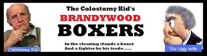 Brandywood Boxers