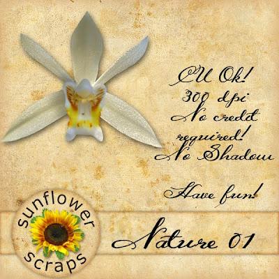 http://feedproxy.google.com/~r/SunflowerScraps/~3/Xjy9HyMyLKo/note-freebie.html
