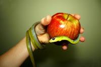 Snake, Apple
