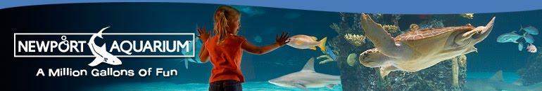 Newport Aquarium 2 Free Kids Admissions With Paid Adult