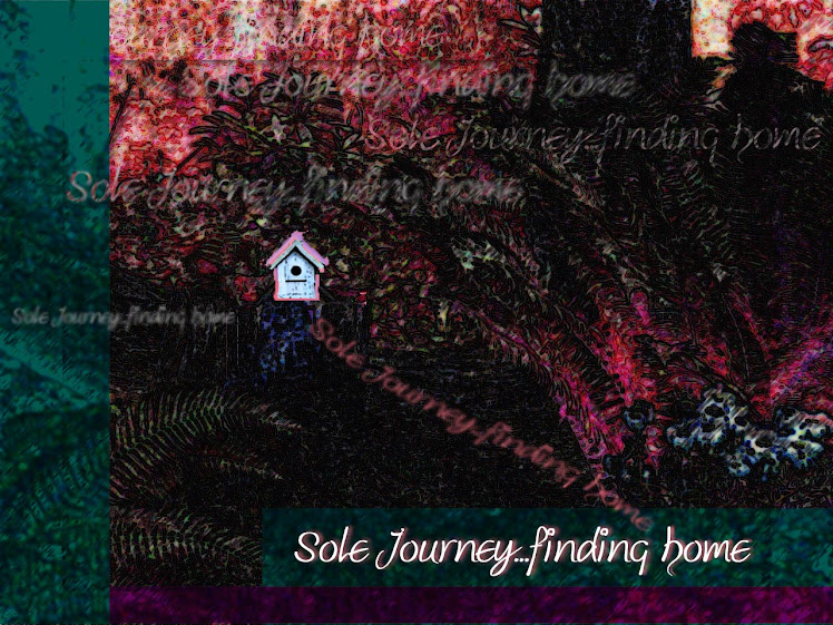 Soul Journey...finding home