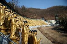 1000 Buddahs
