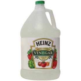 The Best Nest: 15 Uses for Incredibly Inexpensive White Vinegar