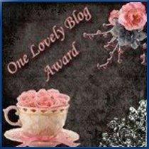 Premio One Lovely Blog, Julio 2009