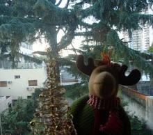 Navidad en Villa Crespo