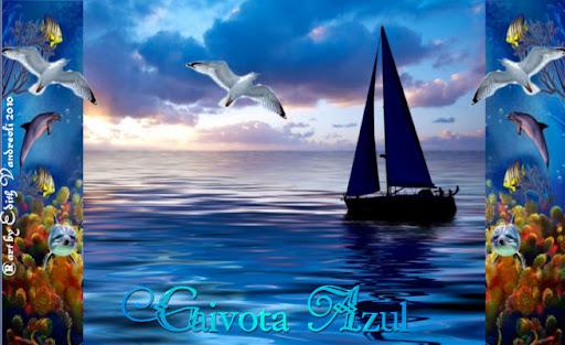 GAIVOTA AZUL