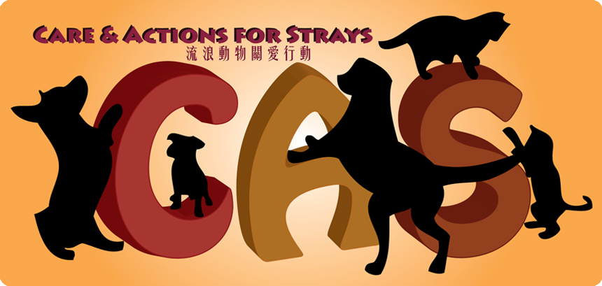 Care & Actions for Strays