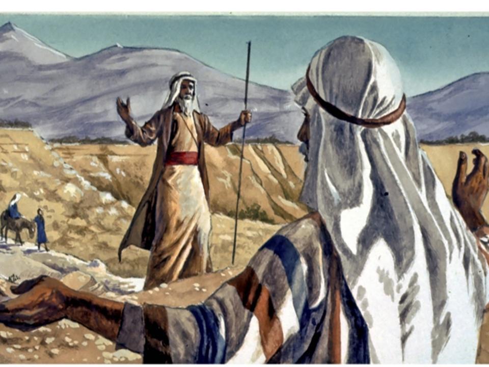 Moshe - Tending To The Sheep