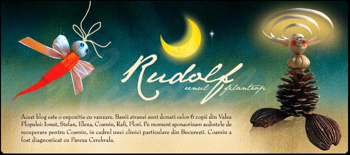 Rudolf - Ren de Craciun, voluntar in restul anului.