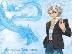 Bleach Anime:Hitsugaya Toushirou