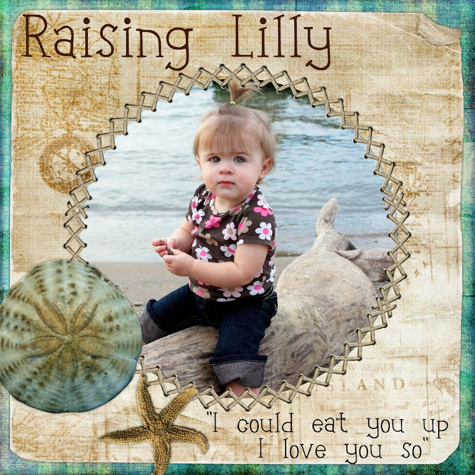 365 Days of Lilly