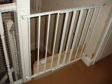 The baby gate at top of stairs with the piece of wood