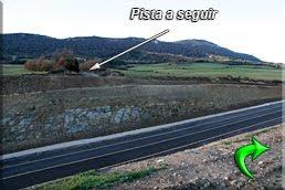 Se cruza la carretera
