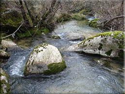 Río del Molino
